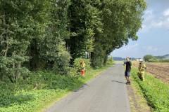 2021.07.25_Baum_auf_Fahrbahn-2
